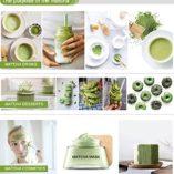 Vireo-El-t-Verde-Matcha-Green-Tea-Matcha-Powder-0-5
