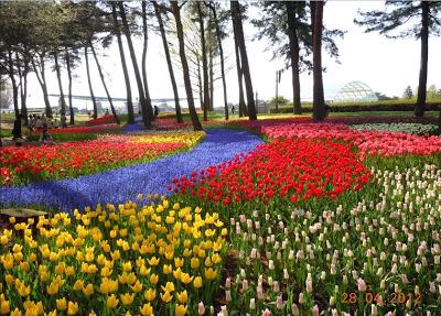 guía turística de japon,turismo en japon,hacer turismo en japon,qué ver en japon,monumentos de japon