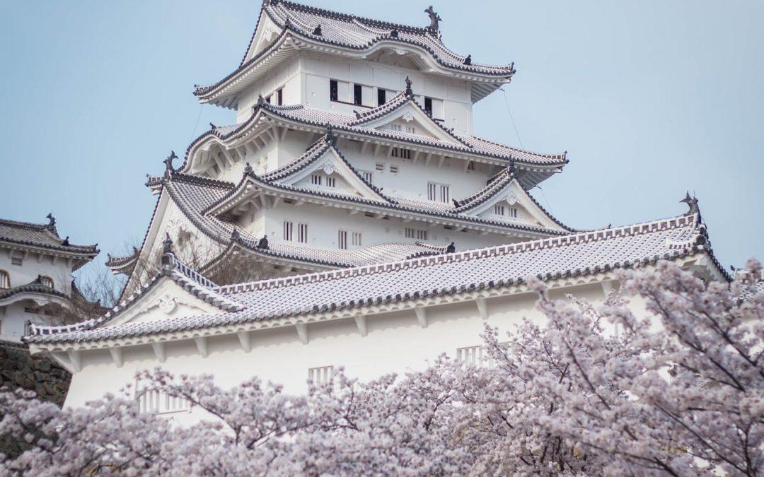 5 Hoteles Temáticos De Moda En Japón